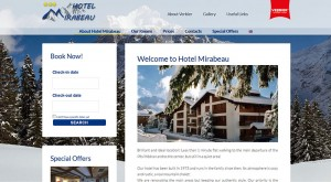 creation of hotel websites